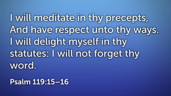 ps 119 (15-16)